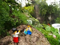 Bhubing Palace Gardens